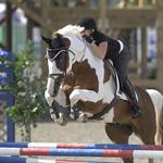 Equestrian Peak Performance