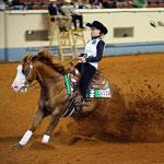 Equestrian Psychology